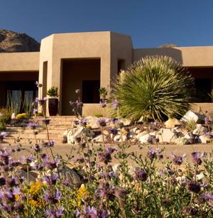 Photo of Sonoran Gardens Landscape Design & Construction in Tucson, Arizona wins three major awards