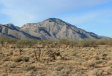 Photo of Arizona Land and Water Trust Helps Protect Acreage in Hayhook Ranch