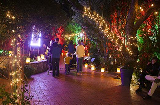 TEP gardens image - Tucson Botanical Gardens Luminaria Night 2019