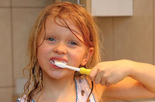 Photo of A Model of Dental Health