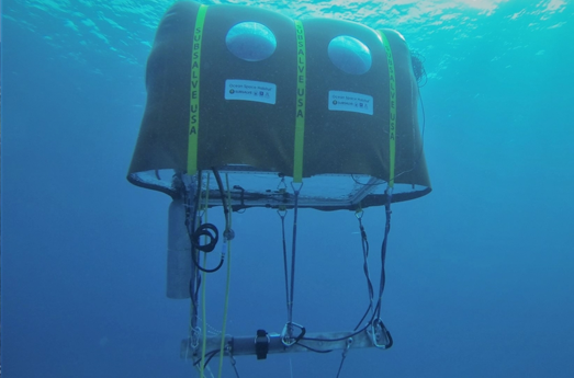 Photo of UArizona Professor's Underwater Tent Invention to Appear on Shark Week
